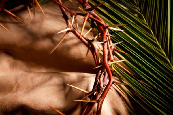 Tuần Thánh 2015: Năm Tân Phúc Âm hóa giáo xứ và cộng đoàn sống đời thánh hiến