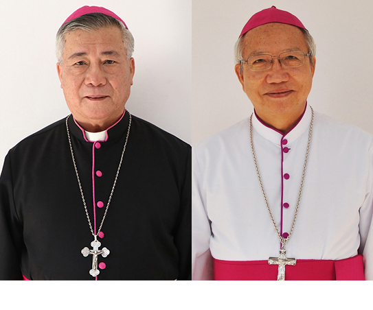 ĐTC Phanxicô thiết lập giáo phận Hà Tĩnh, bổ nhiệm Giám mục giáo phận Vinh và Hà Tĩnh